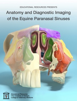 Anatomy and Diagnostic Imaging of the Equine Paranasal