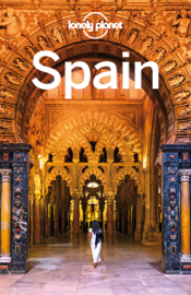 Spain Travel Guide book
