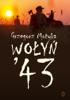 Grzegorz Motyka - Wołyń '43 artwork
