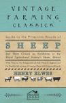 Guide To The Primitive Breeds Of Sheep And Their Crosses On Exhibition At The Royal Agricultural Societys Show Bristol 1913
