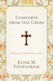 Comforts from the Cross book