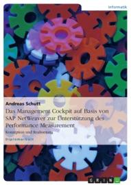Das Management Cockpit auf Basis von SAP NetWeaver zur Unterstützung des Performance Measurement - Andreas Schutt