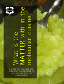 What is the Matter within the Molecular Cuisine