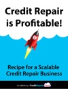 Credit Repair Is Profitable