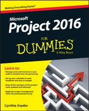 Project 2016 For Dummies