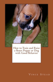 How to Train and Raise a Boxer Puppy or Dog with Good Behavior