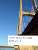 Alex Martin - New Year Flood  artwork