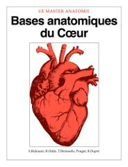 Bases anatomiques du Coeur