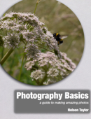 Photography Basics: a guide to making amazing photos