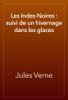 Jules Verne - Les Indes-Noires : suivi de un hivernage dans les glaces artwork