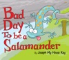 Bad Day To Be A Salamander