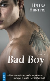 Bad Boy PDF Download