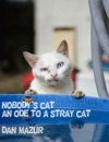 Nobodys Cat An Ode To A Stray Cat