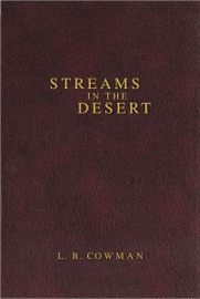Contemporary Classic Streams In The Desert
