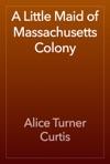 A Little Maid Of Massachusetts Colony