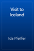 Ida Pfeiffer - Visit to Iceland artwork