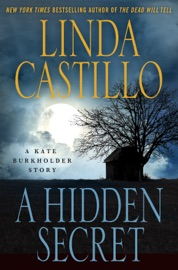 A Hidden Secret PDF Download