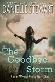 The Goodbye Storm book summary