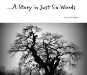 ...A Story in Just Six Words