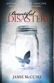 Beautiful Disaster book