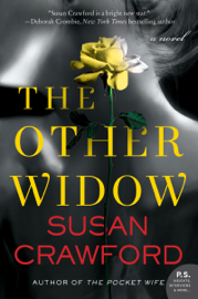 The Other Widow book