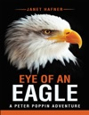 Eye Of An Eagle