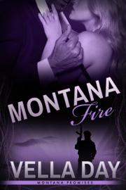 Montana Fire book summary