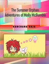 Interactive Fiction Adventure Story For Kids The Summer Orphan