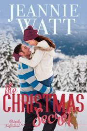 The Christmas Secret - Jeannie Watt book summary