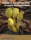 A Guide To The Common Fungi Of Coastal New South Wales