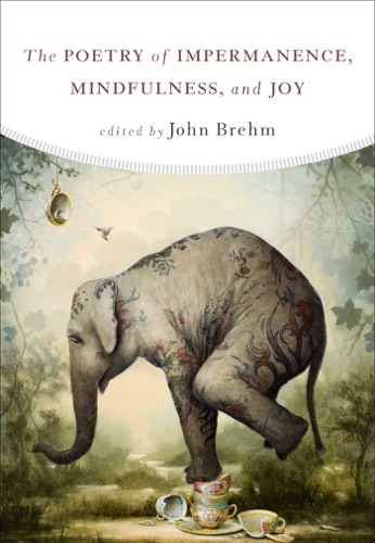 John Brehm - The Poetry of Impermanence, Mindfulness, and Joy
