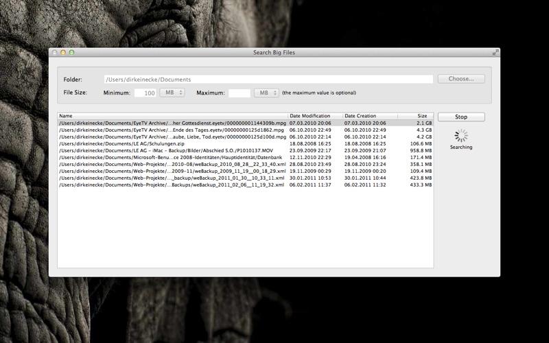 Search Big Files скриншот программы 2