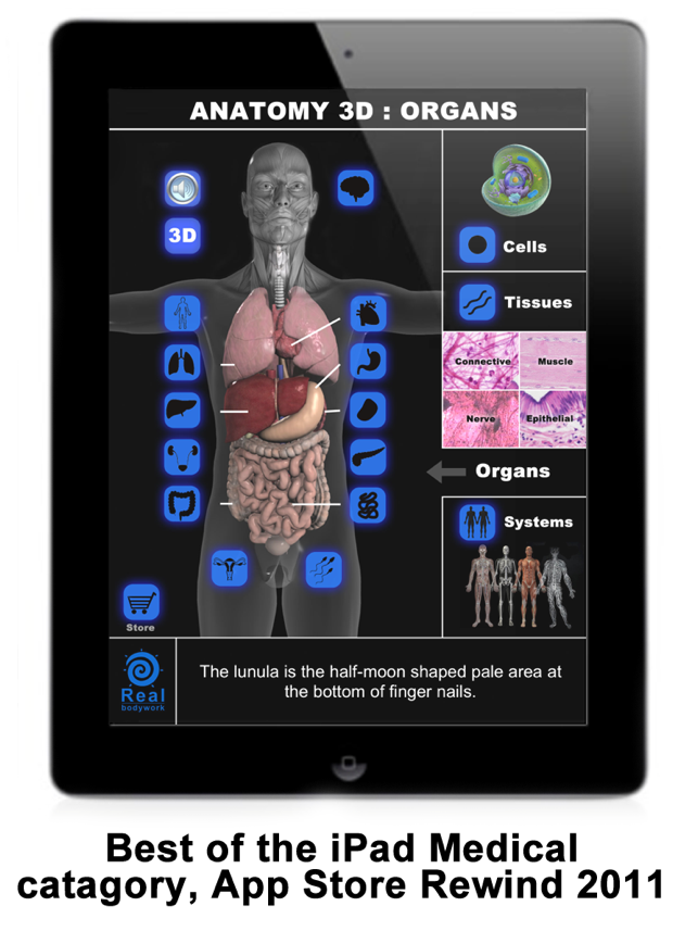 Anatomy 3D: Organs on the App Store