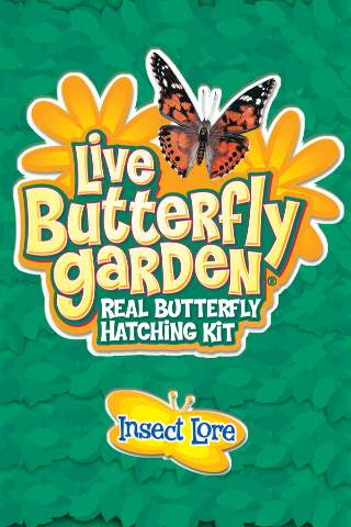 Live Butterfly Garden screenshot one