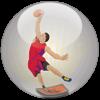 Basket 3D Viewer - Tactic3D