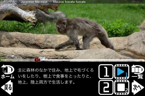 Animal Life mini JP FREE screenshot-3