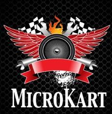 Activities of MicroKart