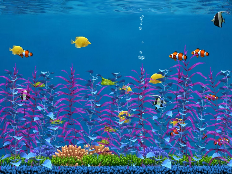 Colorful Aquarium for iPad Lite screenshot-3
