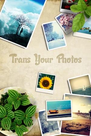 Transphotos Screenshot