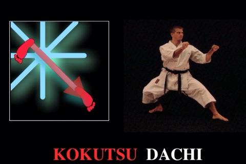 iKata Karate BASIC