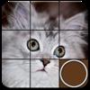 Sliding Puzzles - M2H