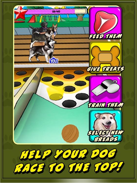 Dog Racer for iPad screenshot-3