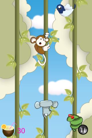 Pina Koala - náhled