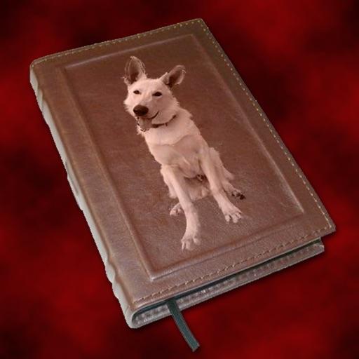 Dog-A-Log