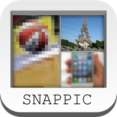 Activities of SNAPPIC