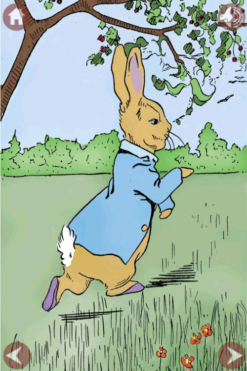 The Tale of Peter Rabbit with Puzzle Pictures screenshot-4