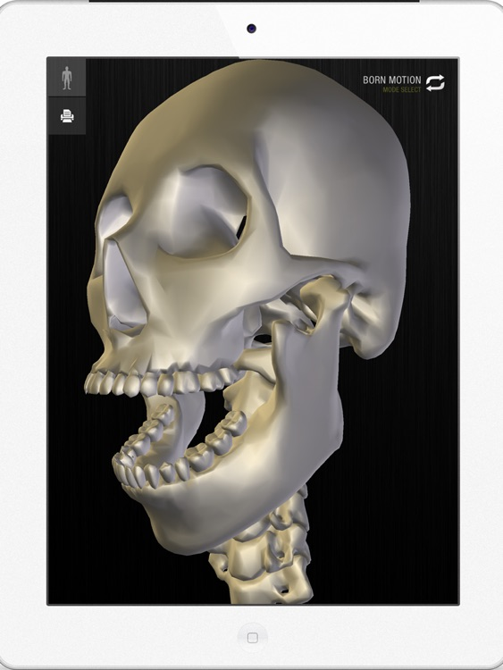 teamLabBody -3D Motion Human Anatomy Lite (Head and Neck)- screenshot-3
