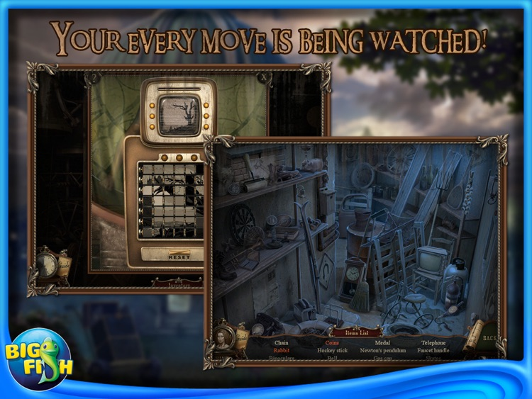 Brink of Consciousness: Dorian Gray Syndrome Collector's Edition HD screenshot-3