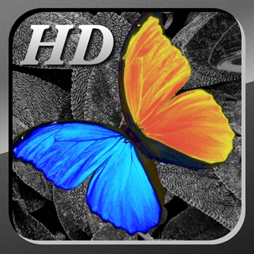 PhotoWizard-HD Photo Editor icon