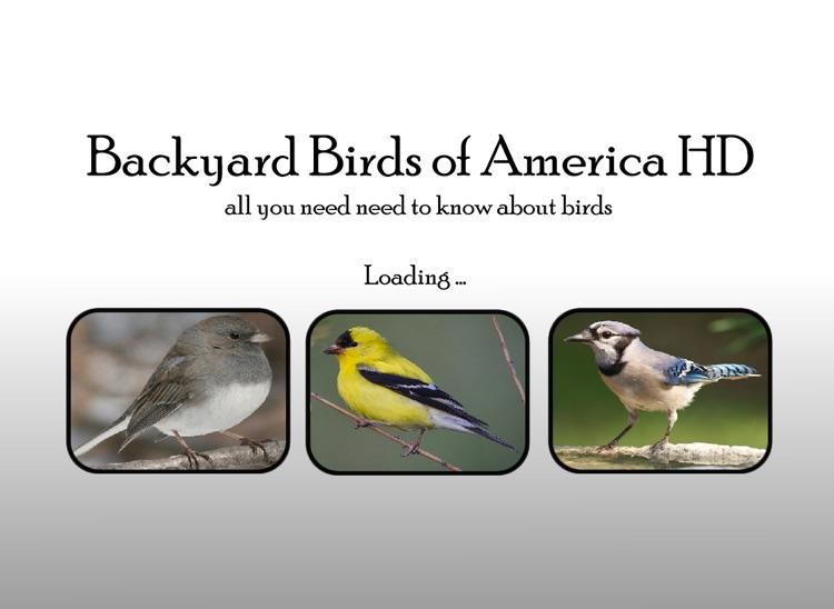 Backyard Birds of America HD